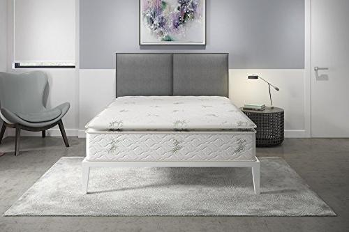 Signature Mattress, Mattress, Coil Queen